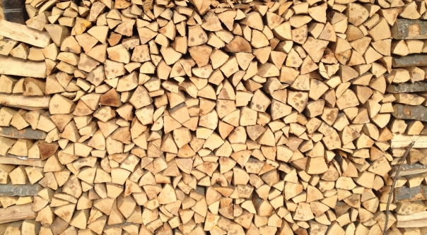 Firewood at Cergnement